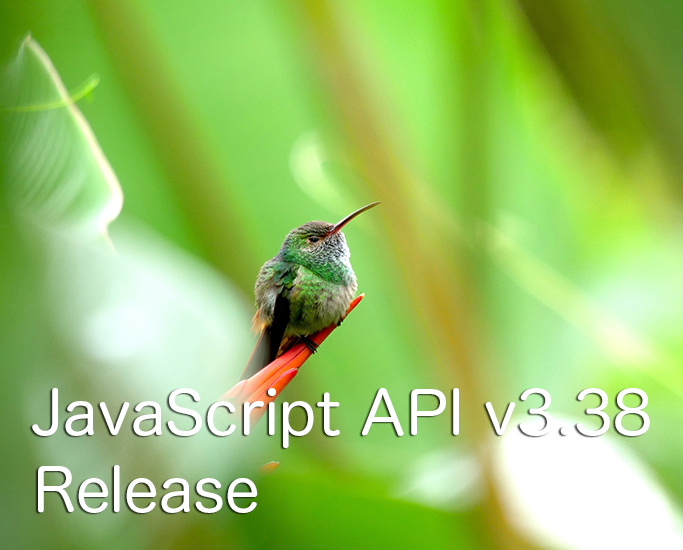 javascript_api_v338
